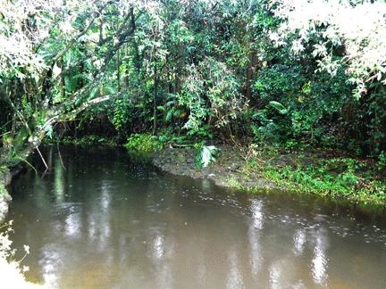calm-river!