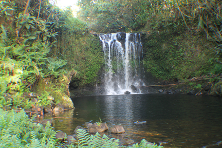 AF_IMG_0079_waterfall1a