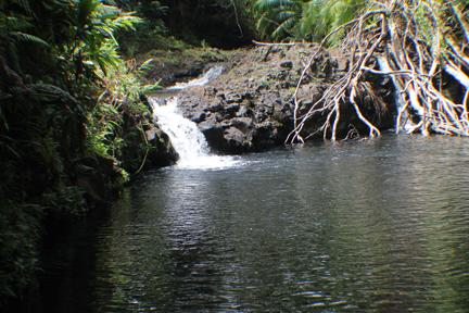 AF_IMG_9859_waterfall1
